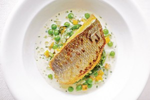 Photo of    Panfried Cornish Bream with Vegetable Nage